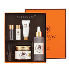 Guerisson basic set