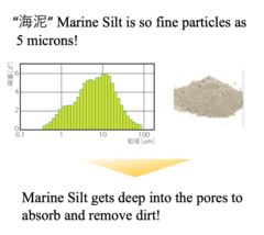 Rev. marine silt charts