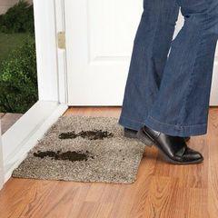Mud trap magic clean step mat dirt heavy
