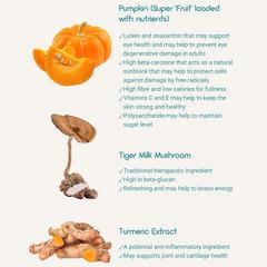 Kino pumpkin ing   web
