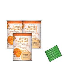 Kino pumpkin bundle